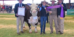 SHINING SUCCESS FOR RAYLEIGH AT DUBBO NATIONAL SHOW