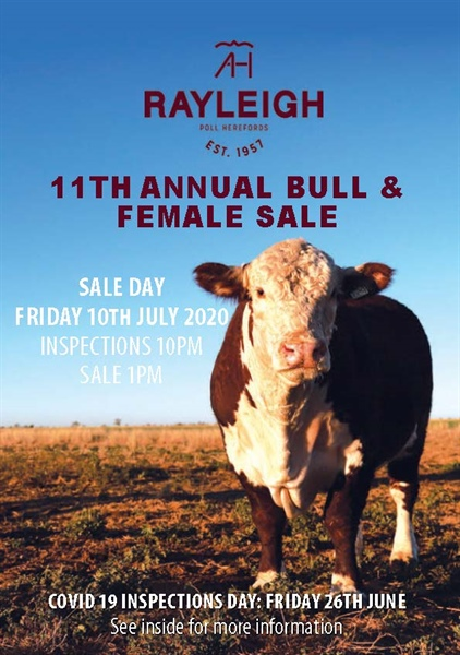 11th Annual Bull & Femaile Sale