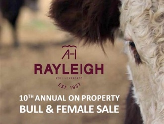 Rayleigh Poll Herefords 2019 On Property Bull and Female Sale – July 12th
